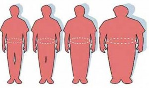 Ideal-Overweight-&-Obese